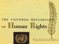 Nacionalni program zaštite ljudskih prava djelomično ostvaren