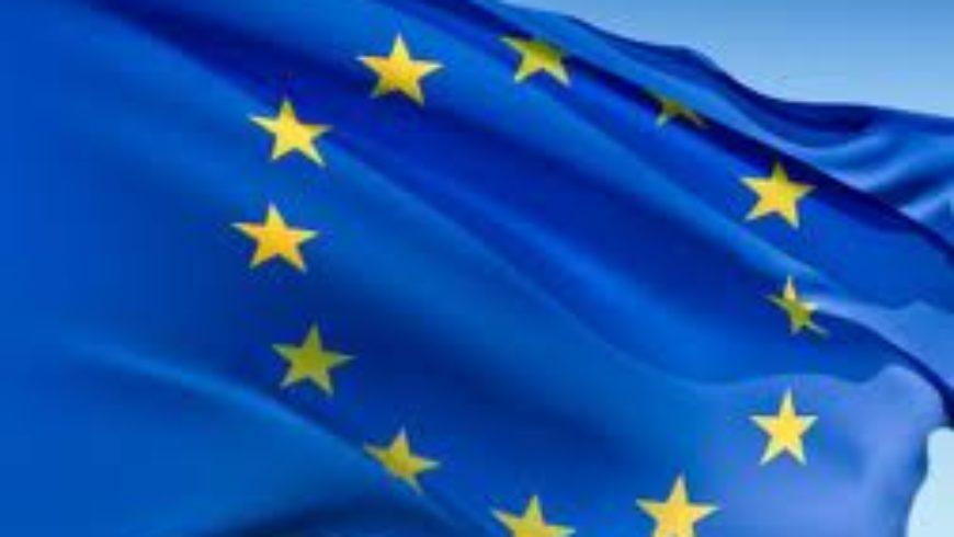 """Rasprava """"Kraj pregovora s Europskom unijom: iskorak ili raskorak?"""""""