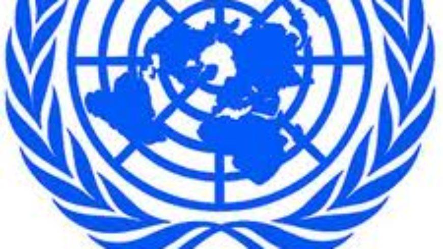 UN i globalni trendovi u zaštiti ljudskih prava