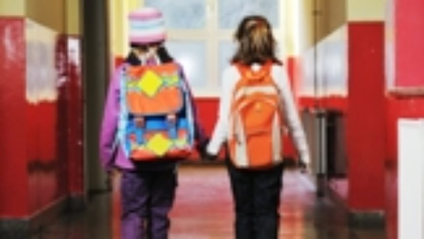 Pravilnik o kriterijima za izricanje pedagoških mjera