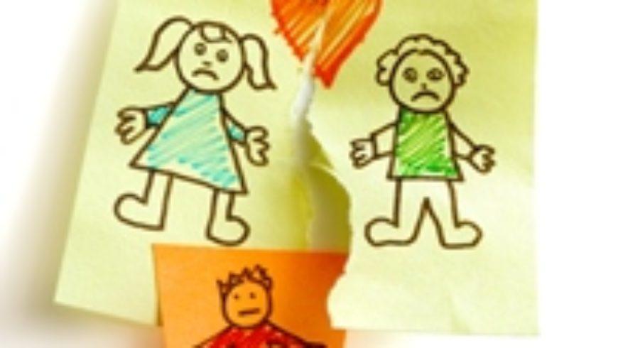 Skup o manipulaciji djecom u razvodu braka