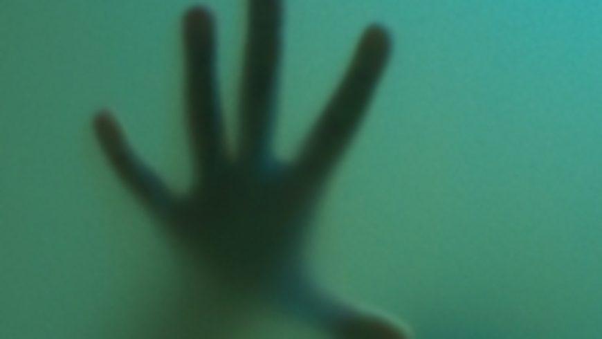 O problemima stambenog zbrinjavanja žrtava nasilja u obitelji