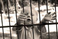 """Najava konferencije """"Djeca čiji su roditelji u sukobu sa zakonom"""""""