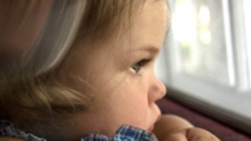 """Najava konferencije """"Prava djeteta – između interesa roditelja i dužnosti države"""""""