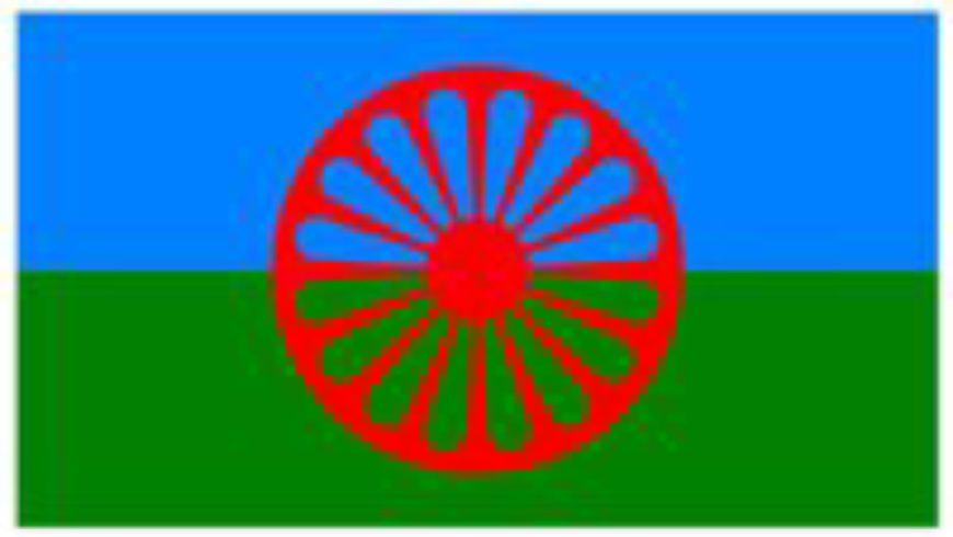 Predstavljen projekt prikupljanja podataka o Romima
