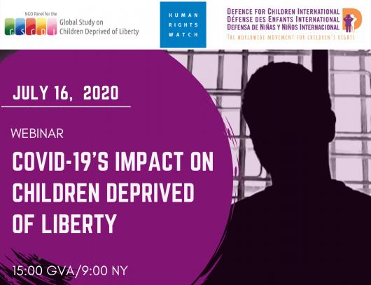 """Webinar """"Utjecaj pandemije COVID-19 na djecu lišenu slobode"""""""