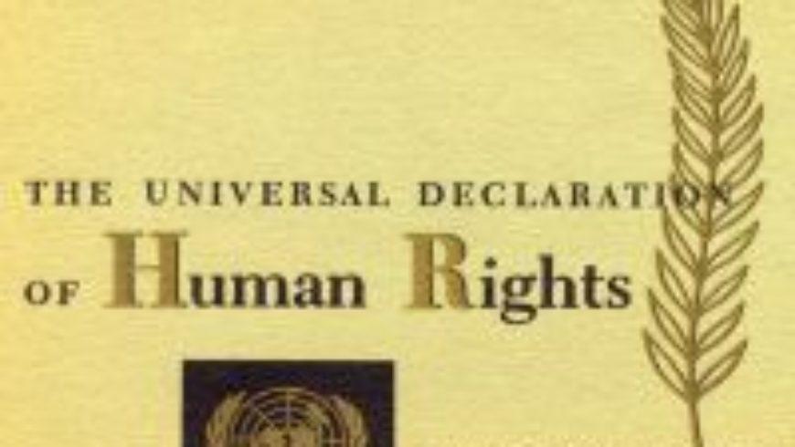 Racionalizacija sustava zaštite ljudskih prava u Hrvatskoj