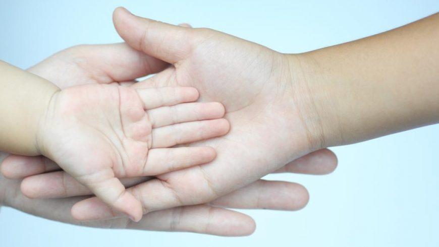 """Seminar """"Jednostavniji život prekograničnih obitelji: ka zajedničkom europskom standardu"""""""